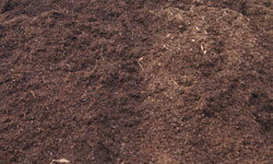 Aged Natural Mulch